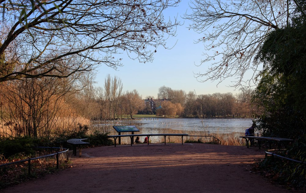 Landscape of trees and lake in Reagents Park London