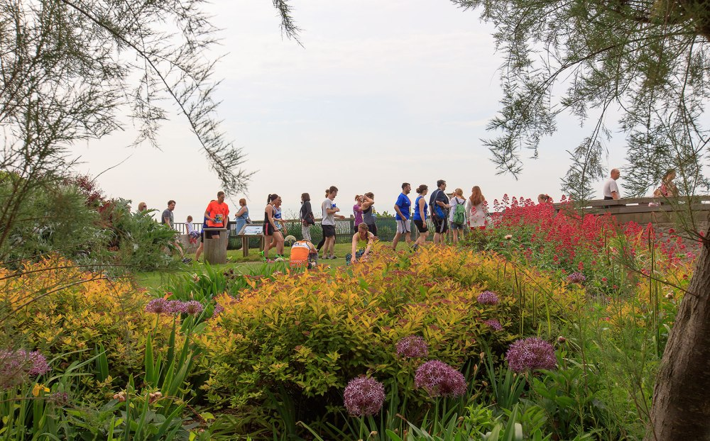 runners preparing to start a race in the park with beautiful flowers and foliage